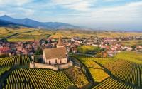Excursion en Alsace